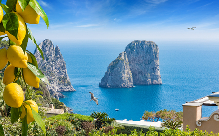 Daylight view of famous Faraglioni Rocks, Capri Island, Italy. Beautiful paradise landscape with azure sea in summer sunny day with ripe yellow lemons in foreground.