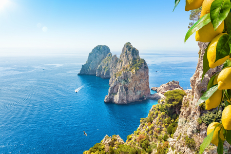 Famous Faraglioni Rocks, Capri Island, Italy. Beautiful paradise landscape with azure sea in summer sunny day with ripe yellow lemons in foreground.