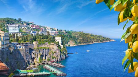 Coastline of Sorrento and Gulf of Naples, Italy. Ripe yellow lemons in foreground. In Sorrento lemons are used in production of limoncello.