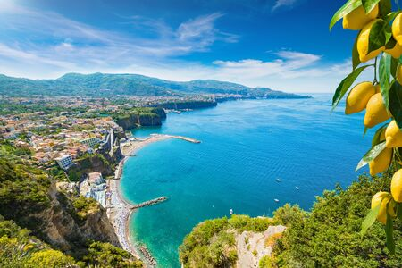 Aerial wide angle view of cliff coastline Sorrento and Gulf of Naples, Italy. Ripe yellow lemons in foreground. In Sorrento lemons are used in production of limoncello. Reklamní fotografie