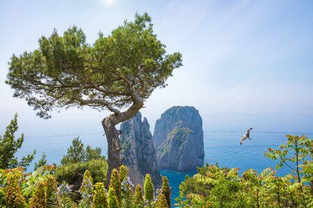 Famous Faraglioni Rocks, Capri Island, Italy. Beautiful paradise landscape with azure sea in summer sunny day.