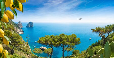 Welcome to Capri concept. Panoramic image with Faraglioni Rocks near Capri Island, Italy. Beautiful paradise landscape with azure sea in summer sunny day and ripe yellow lemons.