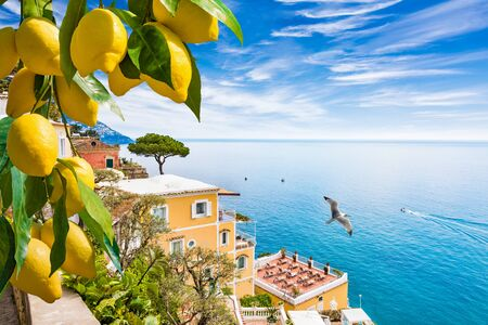 Beautiful Positano on hills leading down to coast, comfortable hotels and azure sea on Amalfi Coast in Campania, Italy. Amalfi coast is popular travel in Europe. Ripe yellow lemons in foreground.