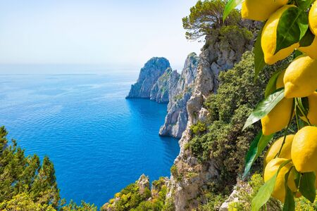 Welcome to Capri cpncept image. Famous Faraglioni Rocks, Capri Island, Italy. Beautiful paradise landscape with azure sea in sunny day with ripe yellow lemons in foreground.