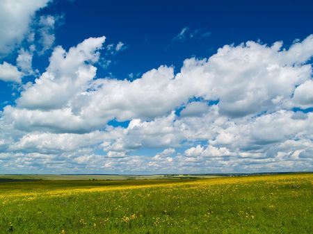 summer landscape with yellow flowers meadow and bright blue sky Stock Photo