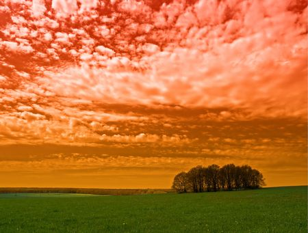 rural landscape with grass trees and red sky photo