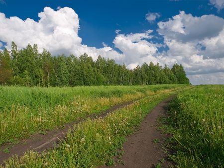 landscape with countryside road, forest, sky and meadow Stock Photo - 3105312