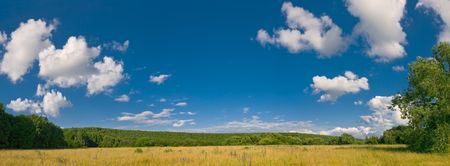 summer landscape with meadows and blue sky with clouds Stock Photo
