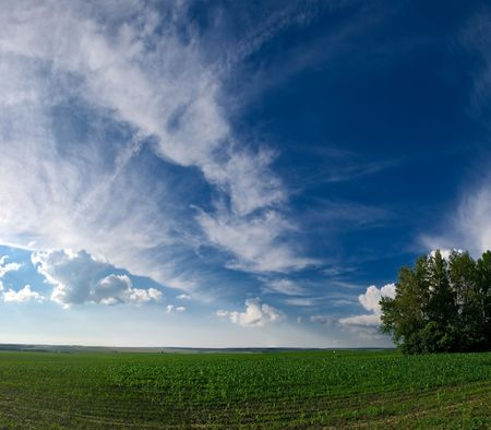 landscape with summer meadow blue sky and clouds Stock Photo - 3331101