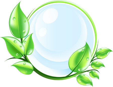 vector with green leaves and water drops. purity concept
