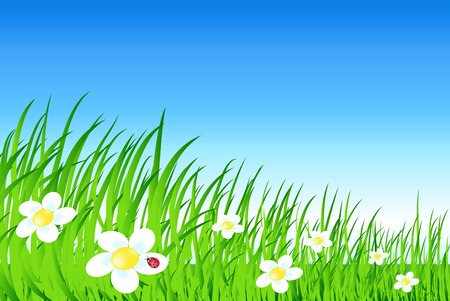 vector cartoon landscape with grass flowes and sky Stock Vector - 5200545