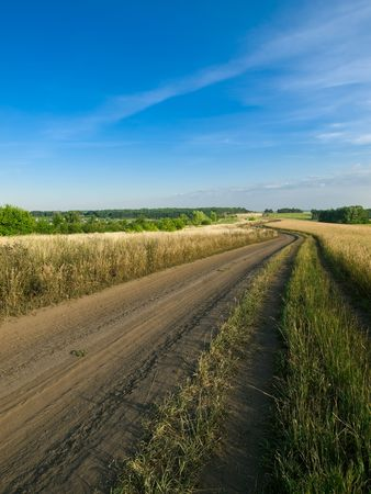 rural road fields and blue sky summer landscape Stock Photo - 5415427