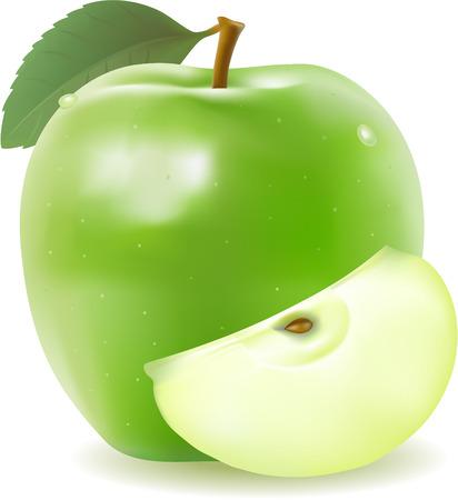 realistische gr�ner Apfel mit Vektor-Segment