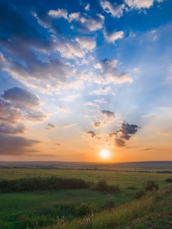 sunset over green meadow landscape. vertical photo