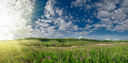 panoramic summer landscape with hills meadow and sky