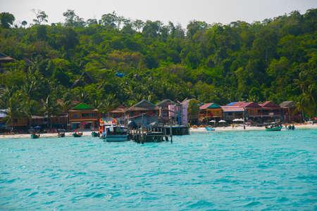 arboles frutales: Hermosas Islas �rboles crecidos en el Golfo de Tailandia mar de China meridional. Camboya. Asia. Foto de archivo