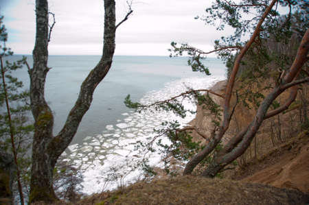 ice floes: Spring in Russia.Trees grow on the hill, below the water with ice floes Stock Photo