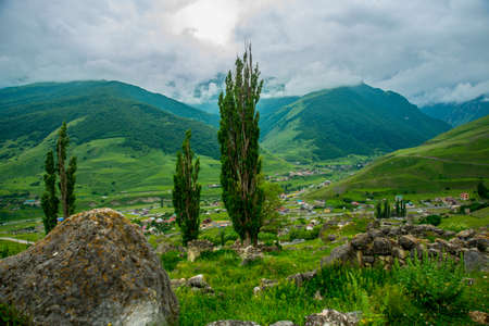 highland region: The peaks of blue-green mountains against the sky,the summer.High green bushes grow in the meadow.The Caucasus..Russia.