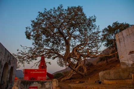 hindus: Pushkar es una ciudad en el distrito de Ajmer en Rajasthan, India. Es uno de los cinco dhams sagrados para los hind�es devotos. Es una de las ciudades m�s antiguas de la India existentes.