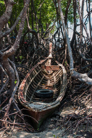 railay: Old wooden boat in the roots of trees. Krabi, Thailand.Peninsula of Railay.