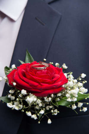 Two beautiful wedding rings lie on the flower of a red rose Stock Photo