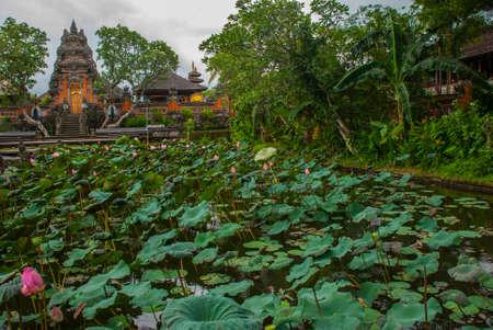 saraswati: Lotus Temple. Ubud, Bali.