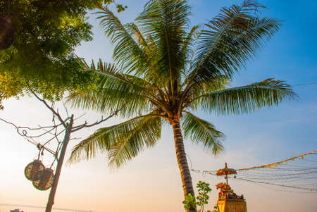 Beautiful beach with a cafe in Sanur with local traditional boats in the morning. Palm trees on the island of Bali at dawn. Bali, Indonesia