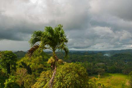 palma: Chocolate Hills and Palma, Bohol Island, Philippines Southeast Asia