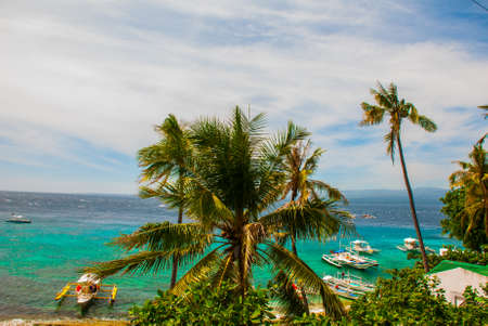 Apo island,Philippines, view on island beach line. Palm trees, sea and boats. The tropical landscape, view from the top. Stok Fotoğraf