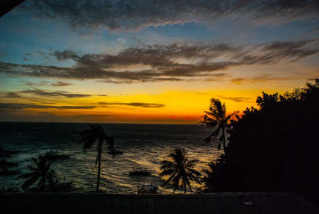 privilege: Sunset, view of the sea and the silhouettes of the palm trees. Apo island, Philippines