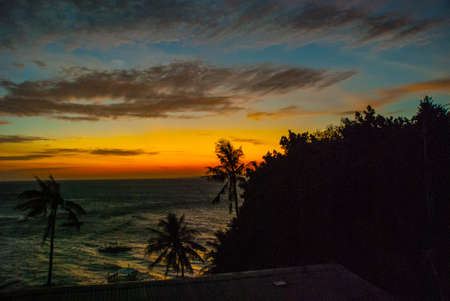 Sunset, view of the sea and the silhouettes of the palm trees. Apo island, Philippines