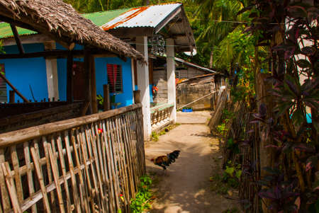 The usual local rural house in Sunny weather. Street. Apo island, Philippines