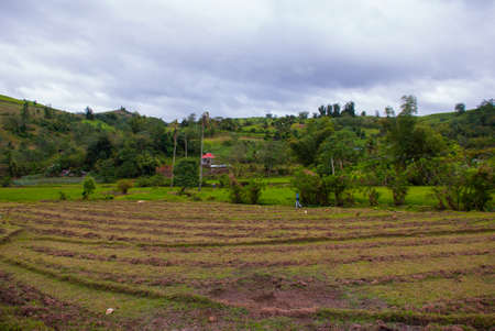 The usual landscape at cloudy weather: rice fields, sky with clouds, hills, trees, houses. Negros island, Philippines