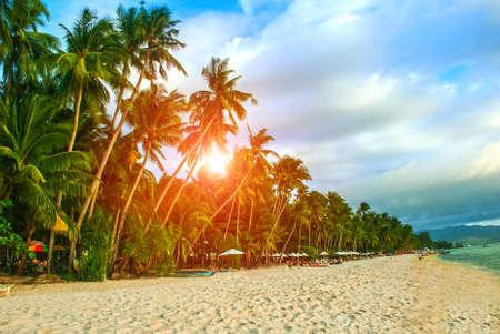 Beautiful palm trees on the White beach. Boracay island, Philippines Stock Photo