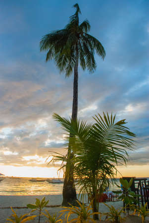 Beautiful tropical landscape with palm trees in the evenin. Boracay island, Philippines Foto de archivo