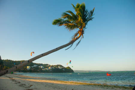 Palm tree flutters in the wind. Evening landscape of a small island and the sea. Boracay island, Bulabog beach, Philippines. Kitesurfing riding sailing on the Board kitesurfing