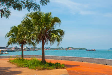 The Central promenade with palm trees by the sea. Kota Kinabalu City is the capital of the state of Sabah, located in East Malaysia. Stock Photo