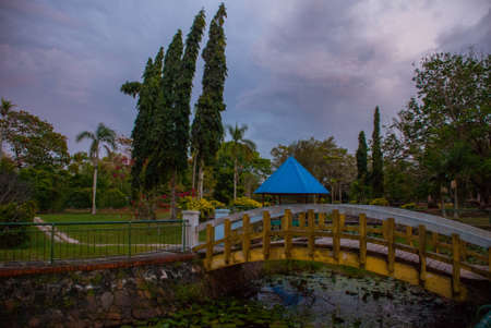 Overgrown pond with water lilies in the evening at the bridge in the Park. Sabah, Malaysia. Kota Kinabalu
