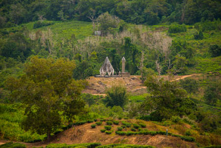 The landscape on the island of Borneo. Sabah Malaysia.