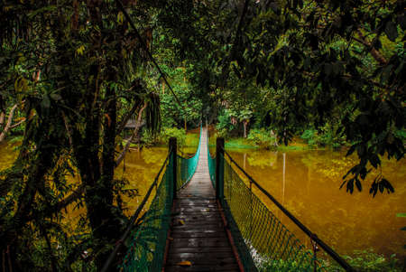 The suspension bridge over the lake in the summer, Borneo, Sabah Malaysia Stock Photo