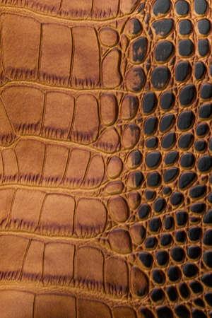 The texture of the skin brown black. An imitation Crocodile-skin petanova