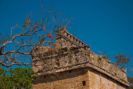 Ancient Mayan city. Destroyed buildings and pyramids in the forest. Fragment of the building against the sky. Chichen-Itza, Mexico. Yucatan. Banco de Imagens