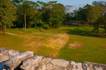 Top view of the jungle and the ancient Mayan city. The famous archaeological complex. Mayan ruins in Palenque, Chiapas, Mexico
