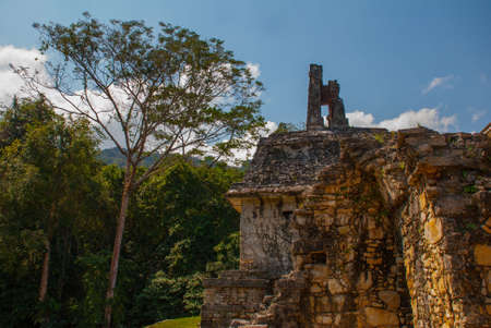 Chiapas, Mexico. Palenque the code name of the ruins of a large Mayan city in the northeast of the Mexican state of Chiapas, political, and cultural center of the Maya in III VIII centuries.