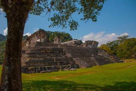 Palenque, Chiapas, Mexico: Mayan ruins taken over by lush jungle. Ancient Mayan city.