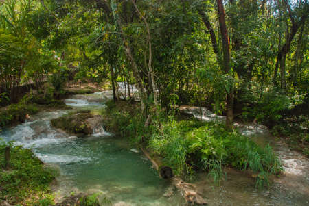 Landscape overlooking the river that flows through the forest. Mexico, waterfall Agua Azul, Palenque. Chiapas