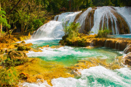 Magnificent waterfall in Mexico, beautiful scenery overlooking the waterfall Agua Azul near Palenque, state Chiapas.