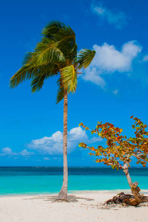 Holguin, Cuba, Playa Esmeralda. Beautiful Caribbean sea turquoise blue color and palm trees on the beach