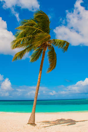 Holguin, Cuba, Playa Esmeralda. Beautiful Caribbean sea turquoise blue color and palm trees on the beach. Paradise landscape Stock Photo
