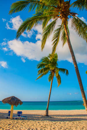 Holguin, Cuba, Playa Esmeralda. Umbrella and two lounge chairs around palm trees. Tropical beach on the Caribbean sea. Paradise landscape Banco de Imagens - 99616551